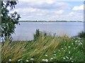 TL1666 : Grafham Water, near Huntingdon by Derek Voller