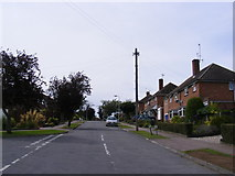 TM3876 : Queens Drive, Halesworth by Adrian Cable