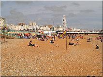 TQ3103 : Brighton Beach by David Dixon
