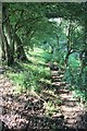 SP0512 : Path climbing hill north of Chedworth by Terry Jacombs