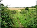 SP9296 : Belwick estate's permitted path by Christine Johnstone