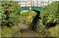 C9342 : Footbridge, Portballintrae by Albert Bridge