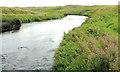 C9342 : The River Bush, Bushfoot (2) by Albert Bridge