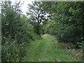 TL2848 : Bridleway towards Clopton Village by JThomas