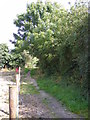 TM4073 : Footpath off Pitman's Grove by Adrian Cable