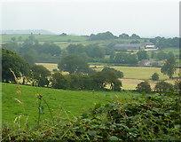 SK3455 : Fields towards Rock House Farm by Andrew Hill