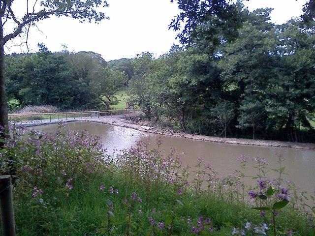 A new pond on Spinneyford Brook