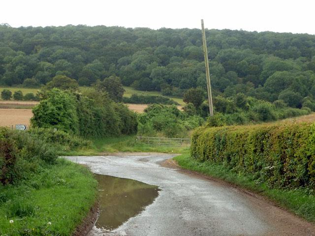 Puddle on Hylter's Lane