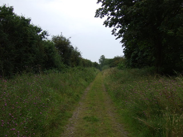 Porter's Way heading east off the A1198 (byway)