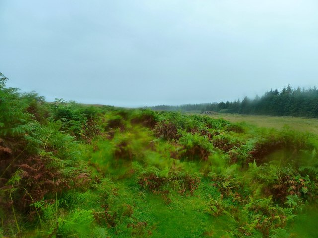 Moor to the east of Craignarget Hill