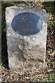 TQ7468 : Plaque by Workers' Memorial Tree by Patrick Mackie