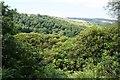 SK2473 : Bramley Wood by Dave Dunford