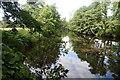 SK2473 : River Derwent below Calver by Dave Dunford