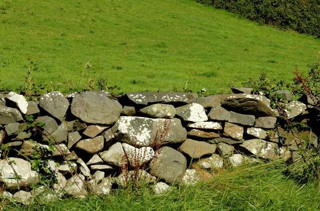 Drystone wall near Killinchy