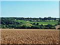 TQ6636 : View towards Ridge Farm by Robin Webster