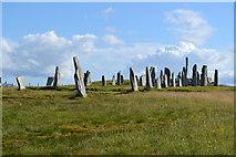 NB2133 : Calanais Standing Stones by David Martin