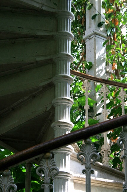 Spiral staircase in the Temperate House, Kew