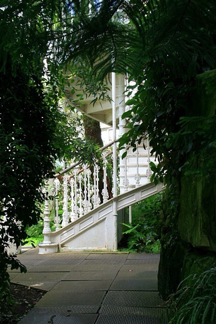 The up staircase in the Temperate House, Kew