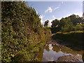 ST5366 : Elwell Lane by James Ayres