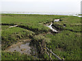 TQ8385 : Channel through the marsh by Roger Jones