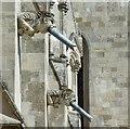 SU8504 : Chichester Cathedral - Modern Gargoyles by Rob Farrow