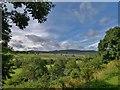 NU0501 : River Coquet, Rothbury Golf Club by Chris Morgan