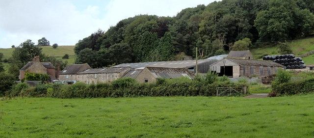 Sycamore Farm