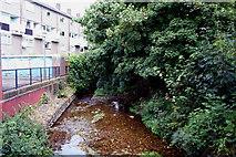 TQ3870 : Green Chain Walk:  Ravensbourne River by Dr Neil Clifton