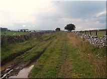 SK2057 : Rutted Byway near Minninglow by Jonathan Clitheroe