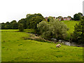 SD6425 : River Darwen by David Dixon