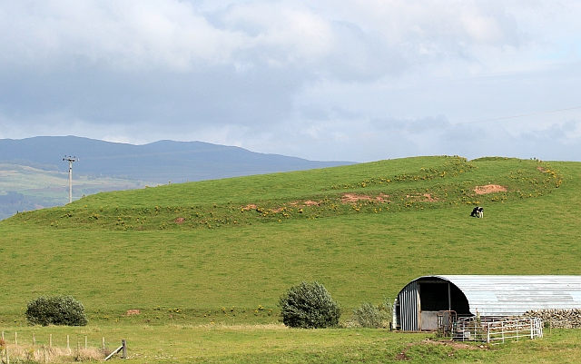 Hill fort, Ring Hill, North Balfern, Kirkinner
