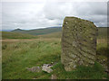 NY7719 : Carved stone on Tinside Rigg by Karl and Ali