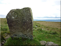 NY7719 : Carved stone on Tinside Rigg(2) by Karl and Ali