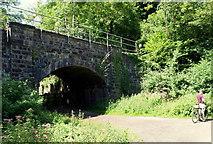 ST5673 : Avon Gorge - N. Somerset by David Hallam-Jones