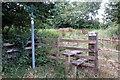 SP8415 : Stile ant path to Grove Farm by Philip Jeffrey