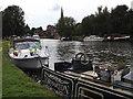 SU4996 : River Thames at Abingdon by Colin Smith