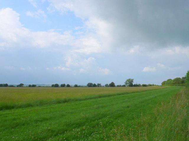 Field at Colnpen Barn
