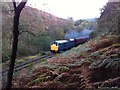 SE8191 : Class 31 locomotive on the NYMR by Andrew Abbott