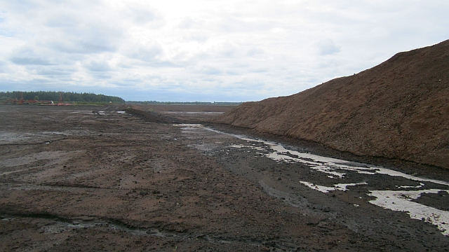 Bog and peat extraction