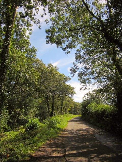 Yardbury Hill Road