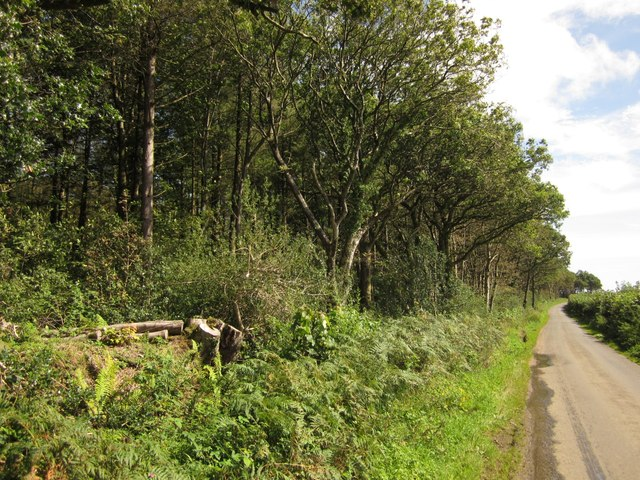 Parehayne Hill