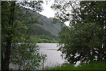 NN5810 : Loch Lubnaig through the trees by N Chadwick