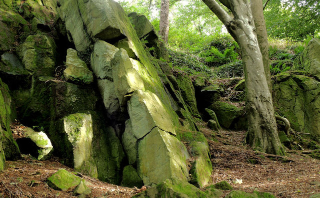 Old quarry, Killynether, Newtownards