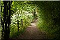 TQ4561 : Path off Snag Lane  by Ian Capper