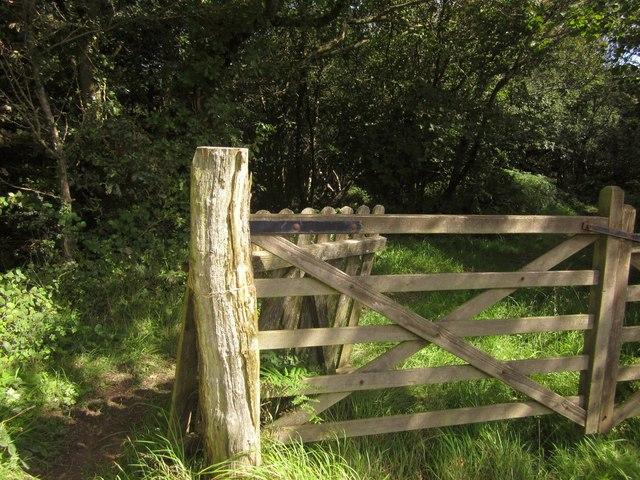 Gate into Downhayne Brake
