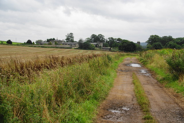 Farm track near Tixall