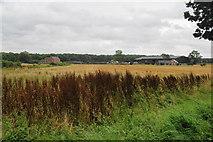 SJ9824 : Manor Road by Bill Boaden