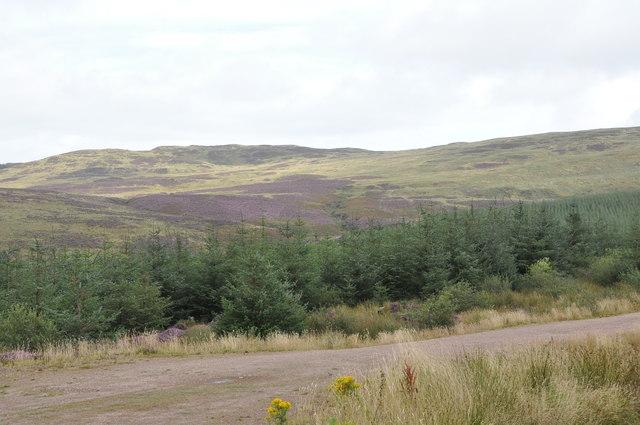 Valley of Chiskan Water, Kintyre