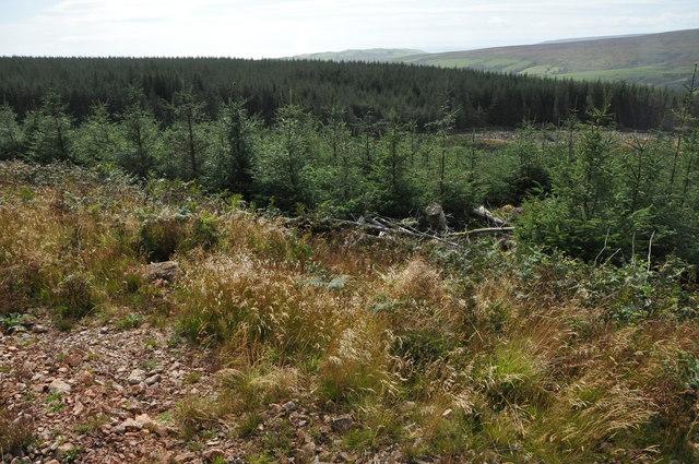 From Gartloskan Hill, Kintyre