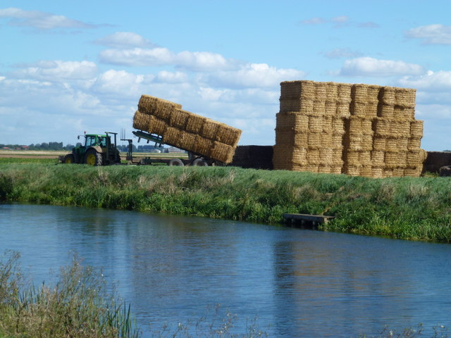 Building a straw stack near March - Photo 2 of 5